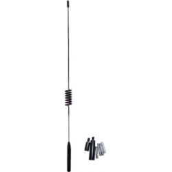 Antenos antgalis